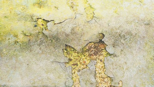 filtraciones de humedad en las paredes